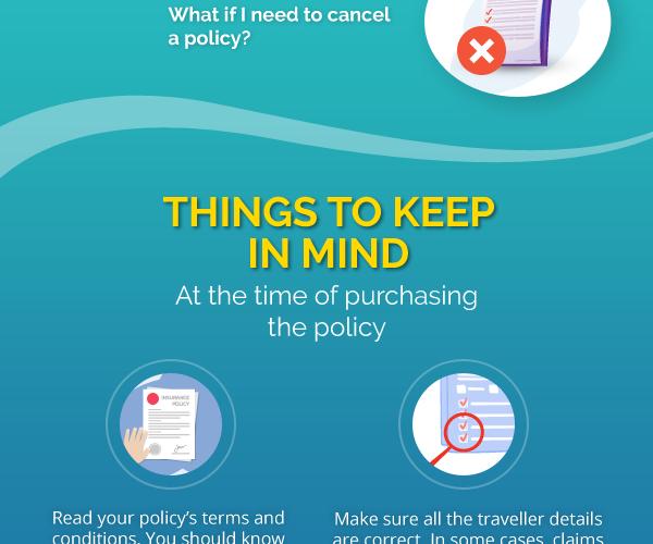 Travel Insurance Infographic